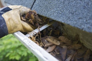 An Expert Cleaning Gutters in Cave Creek